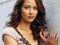 In addition to this big news, Marvel also announced the casting of Whedon regular Amy Acker as Agent Phil Coulson's cello-playing love interest.