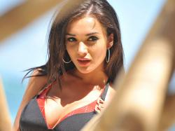 Amy Jackson Wallpaper -14586
