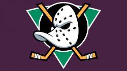"Anaheim ""Mighty Ducks"" 2013 Retro Throwback Win Horn"