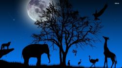 Animal Silhouette Wallpaper 15254