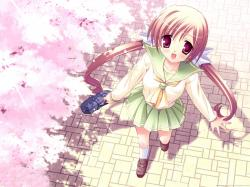 Cherry Blossoms Wallpaper 1600x1200 Cherry, Blossoms, School, Uniforms, Young, Smiling, Bags, Anime, Girls