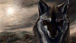 Desktop hd anime wolf images