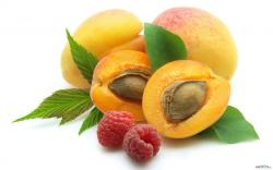 Healing properties of apricots