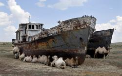boats-aral-sea (1)