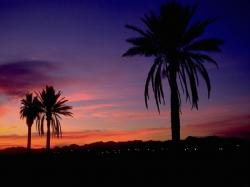 Desktop backgrounds · Backgrounds · Travels Semi tropical sunset, Arizona