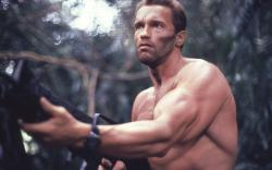 Arnold Schwarzenegger Predator Wallpaper in 1280x800 Widescreen