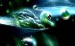 Art Swan Bird Water Bubbles
