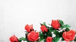 1920x1080 Artificial Flowers wallpaper