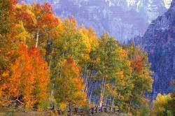 Nature Apple Desktop Autumn Colors Mac Background Nature