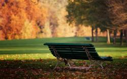 Autumn Bench Meadow