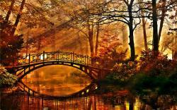 Autumn bridge HQ Wallpaper
