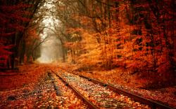 Autumn Landscape Photography Wallpaper 1920 x1200
