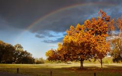 Autumn Rainbow Landscape
