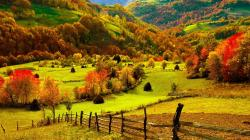 ... Autumn Wallpaper ...