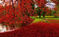 Romantic Autumn Wallpaper
