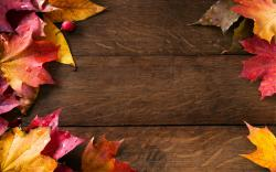 Abstract Autumn Frame Wallpapers HD Autumn Wallpaper
