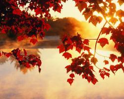 Autumn Wallpaper HD Wallpaper 10