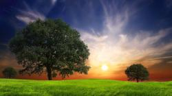 Awesome Nature Wallpapers For Desktop Hd Pictures 4 HD Wallpapers