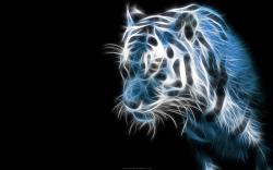 Wallpaper Tiger Wallpapers