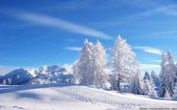 Awesome Winter Wallpaper 10495