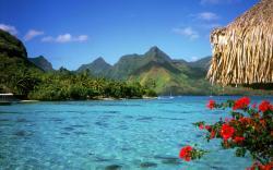 Travel to the Bahamas