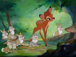 Production on Bambi began immediately, and was actually intended to be the studios second film. However, a number of reasons pushed back production ...