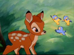 Bambi Image Wallpaper HD Phone