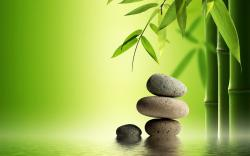 Bamboo Stone