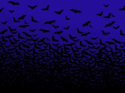 Bats mammals night sky swarm 3200x2400