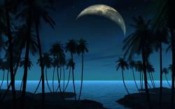 Beach Moon Night Watch Hd Wallpapers 2560x1600px