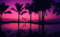 purple beach sunset wallpapers