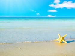 ... beach wallpaper ...