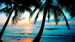 Beach Wallpapers 6494