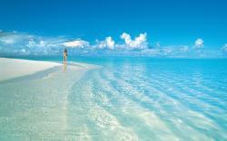Beautiful Beachside Stroll