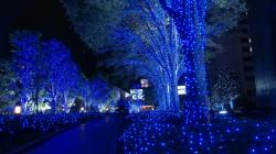 Beautiful Christmas Lights In Japan HD Wallpapers