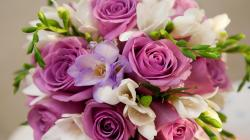 Beautiful Flowers Images Quote 1 HD Wallpapers