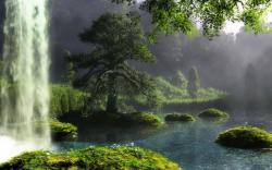 Beautiful Forest Waterfall HD wallpapers