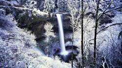 Beautiful Frozen Forest Wallpaper