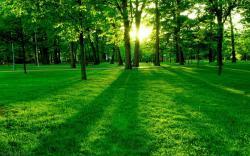 beautiful-nature-wallpapers-