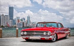 Beautiful Impala Wallpaper