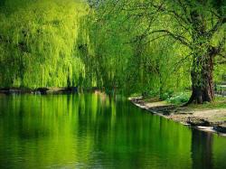 Beautiful Lake HD Wallpapers ...