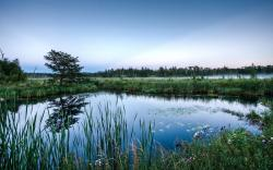 Views: 600 Pretty Pond Wallpaper 21293