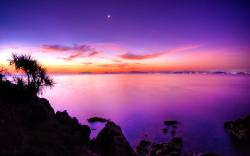 Beautiful Purple Dusk Wallpaper