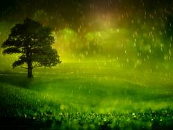Related Article Beautiful Rainy Season Hd Wallpaper Download :