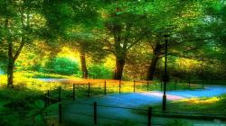 Top Beautiful Scenery Wallpapers