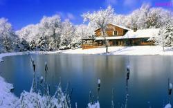 Pretty Snowfall Wallpaper 15979