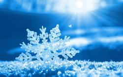Beautiful Snowflake Wallpaper