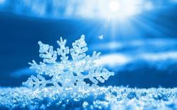 Beautiful Snowflake Wallpaper