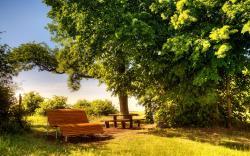 Beautiful Sunny Day Wallpaper