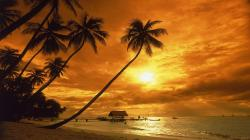 Amazing Sunset Wallpaper Pictures 5 HD Wallpapers
